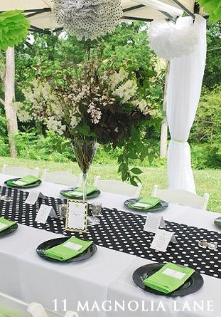 Baby Shower In Lime Black And White 11 Magnolia Lane