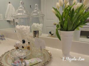 bathroom counter silver crystal