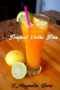 Orange Guava Vodka Fizz Recipe