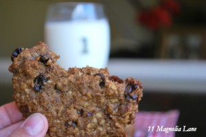 Vegan Oatmeal Flax Spelt Cookies are Perfect for Fall