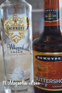 whipped cream apple cider martinis