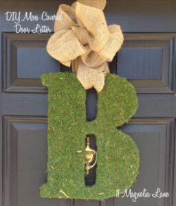 DIY Moss Letters--Bring a Burst of Spring to your Front Door!