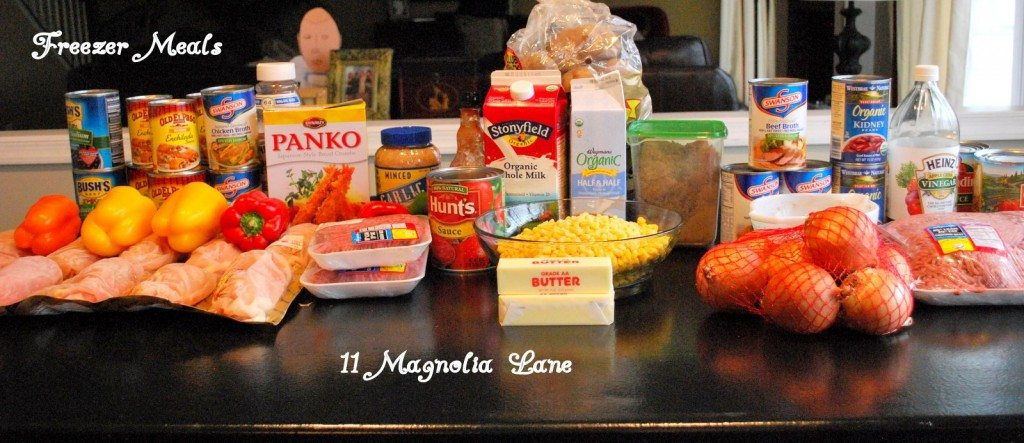 """Here is what was purchased for the """"Big Cook"""".  I spent approximately $135.00 for everything and got approximately 24 freezer meals"""