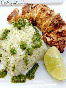 Fajita Chicken with Green Onion and Cilantro Rice