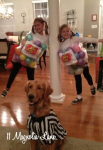 Great Ideas for Making Halloween Fun!