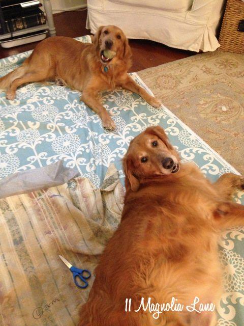 dogs-fabric