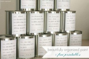 Operation: Organization 2014 ~ Organized Paint by Simply Organized