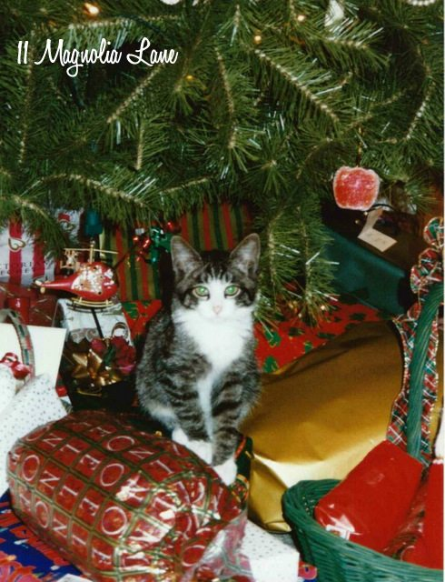 tinker-christmas