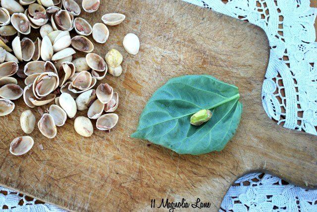 Nut & Basil copy