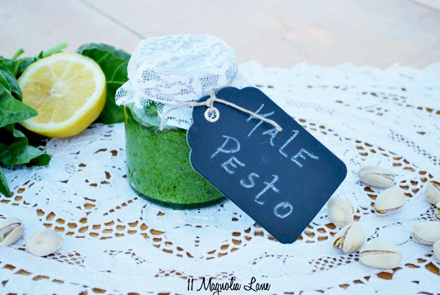 Healthy & Delicous Kale Pesto Recipe