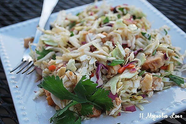 asian-coleslaw-salad-pic1