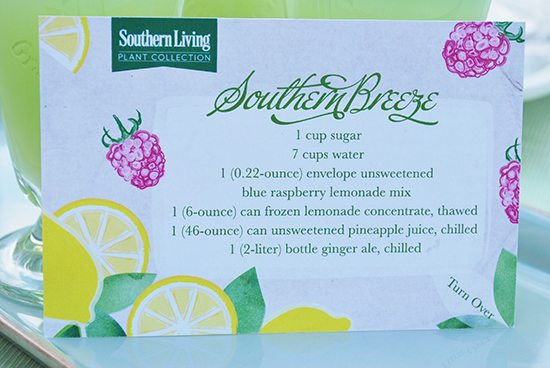 southern-breeze-drink-punch-recipe