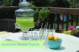 "Southern Living Southern Breeze ""Mocktail"" Punch"