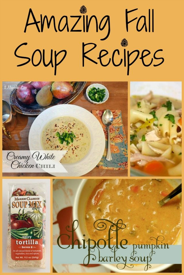 Amazing Fall Soup Recipes | 11 Magnolia Lane