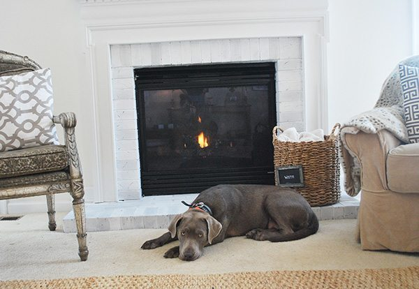 fireplace-with-silver-lab