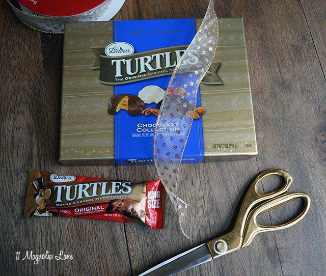 turtles-before
