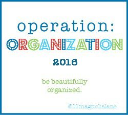 Operation: Organization 2016 Kick-Off!