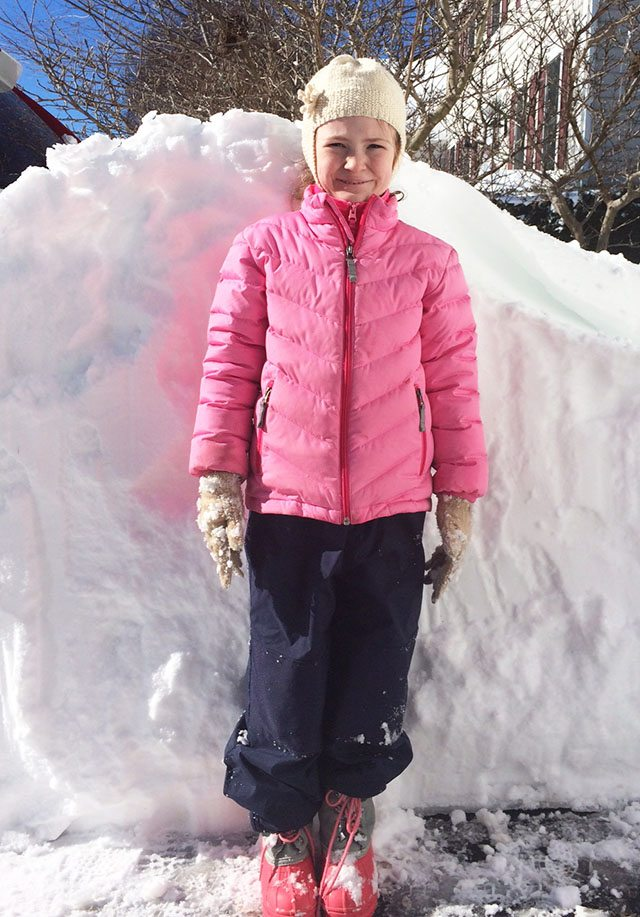 snow-blizzard2016