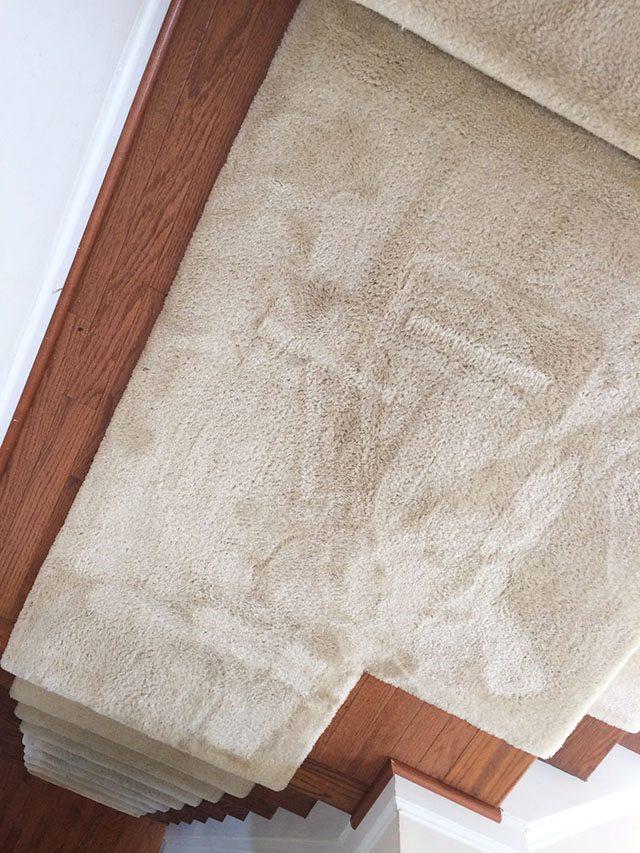 clean-carpets-1