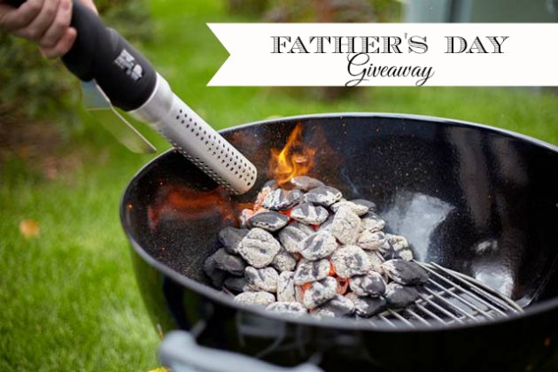 HomeRight Electro-Light Fire Starter Giveaway {Father's Day!}