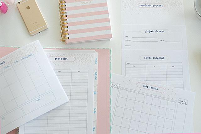 student-planner-pink-schedule-activities