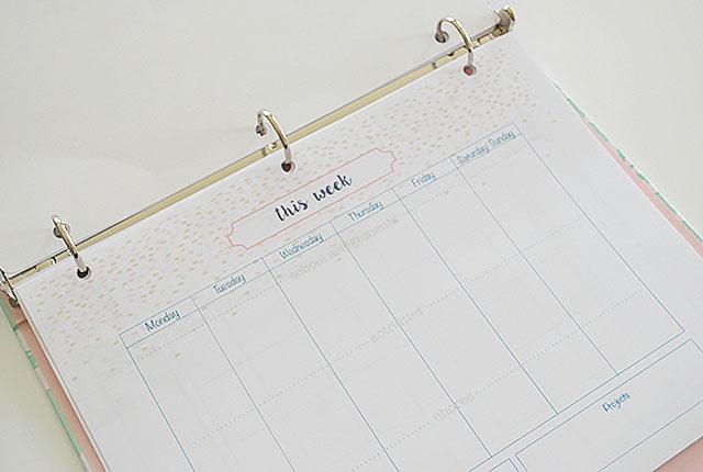 this-week-activities-student-planner