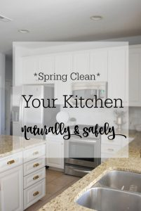 Natural Spring Cleaning {The Easy Way} + A Giveaway!