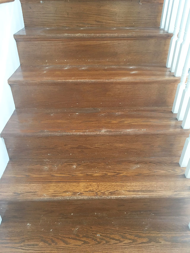 Once The Carpet Was Removed And All The Staples And Nails Pulled Out I  Swept The Stairs Then Gave Them A Good Vacuuming. I Was A Little Scared By  The Amount ...