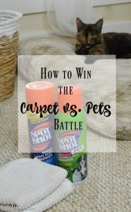 How to win the carpet vs. pets battle