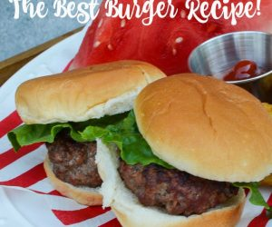 The best hamburger recipe--easy and delicious, plus tips for grilling   11 Magnolia Lane