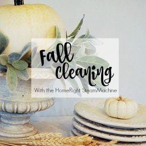 Fall housecleaning with the HomeRight SteamMachine | 11 Magnolia Lane