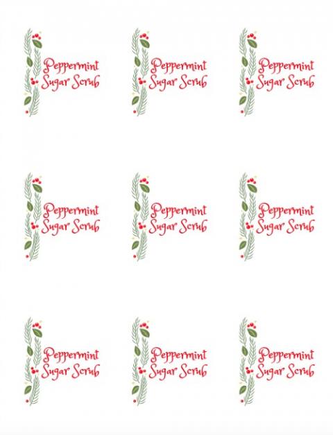 picture regarding Printable Sugar Scrub Labels called Straightforward Peppermint Sugar Scrub Recipe 11 Magnolia Lane